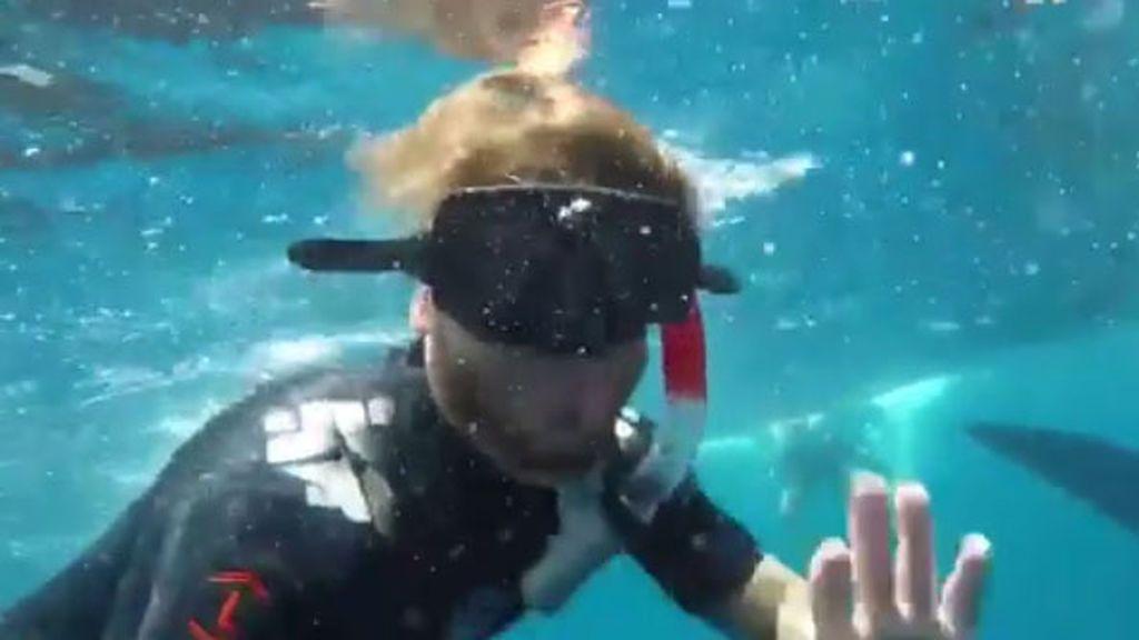 ¡La última locura de Sergio Ramos! Se baña con un tiburón ballena 🐋