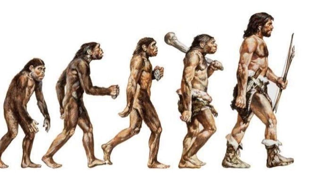 Un paso más en la evolución: descubren una especie 'fantasma' de humanos arcaicos de África