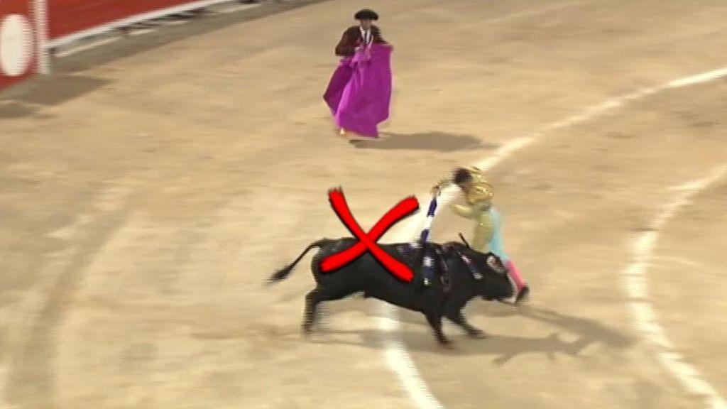 Toros a la balear