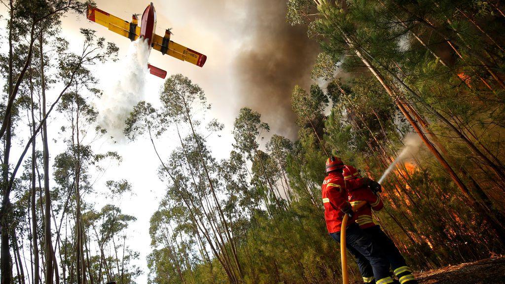 Incendio forestal junto a la aldea de Macao