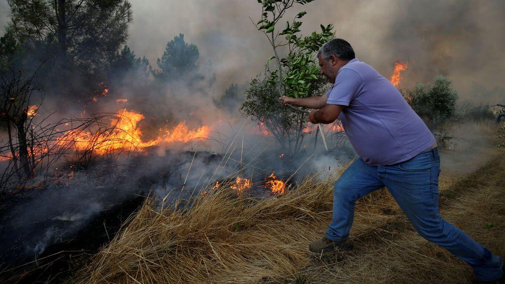 Incendio forestal en Brejo Grande, cerca de Castelo Branco