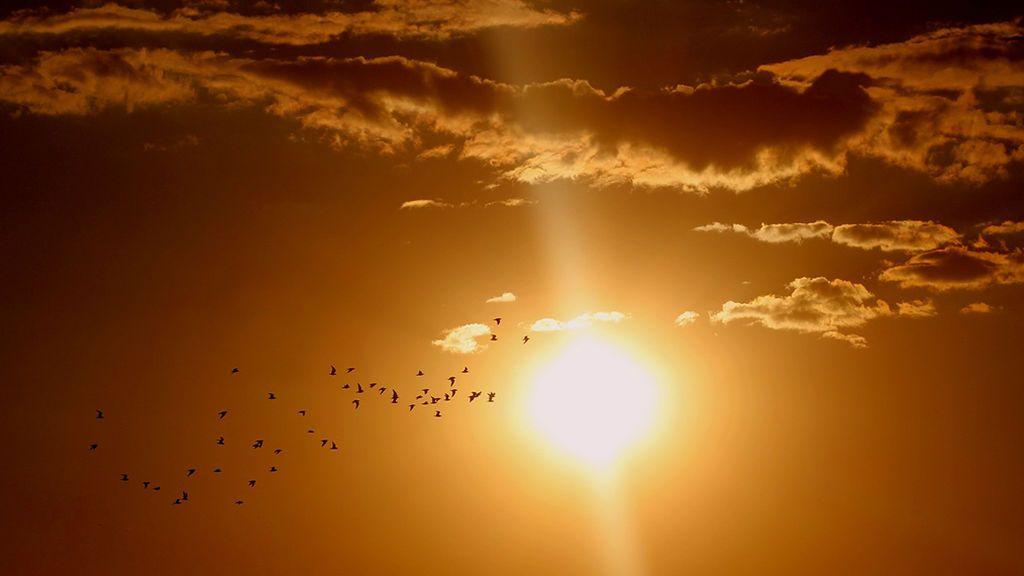 Seis cosas que no debes hacer después de tomar el sol