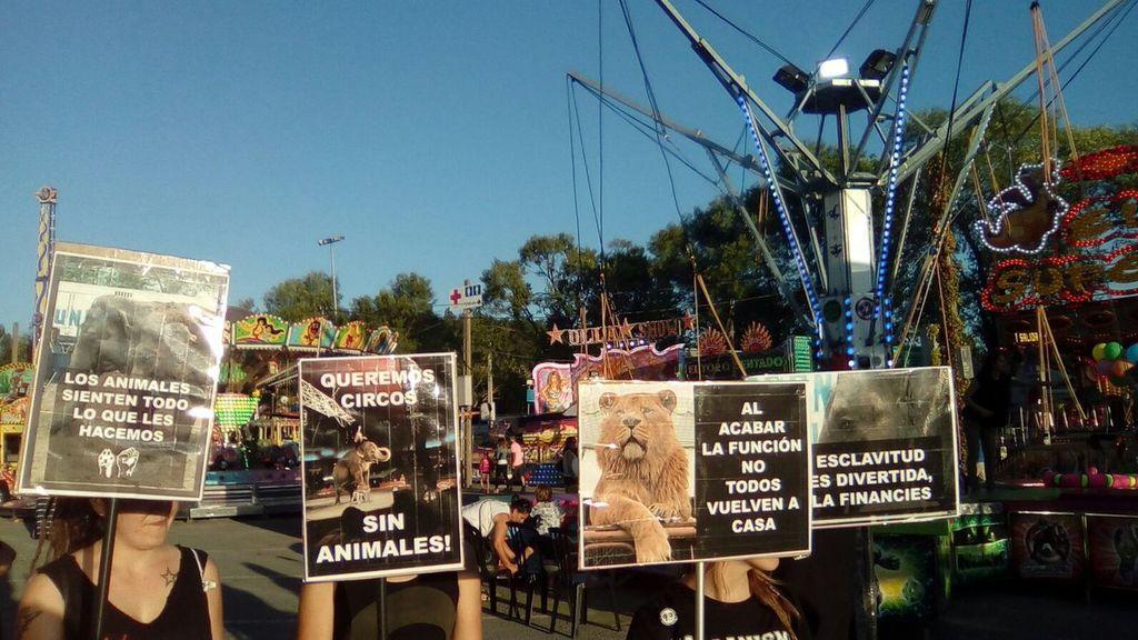 Un total de 418 municipios españoles se han declarado libres de circos con animales