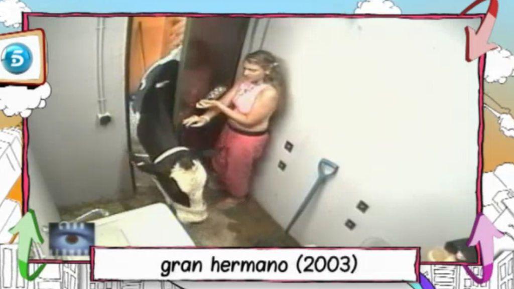 Fresita, atacada por la vaca en GH 5