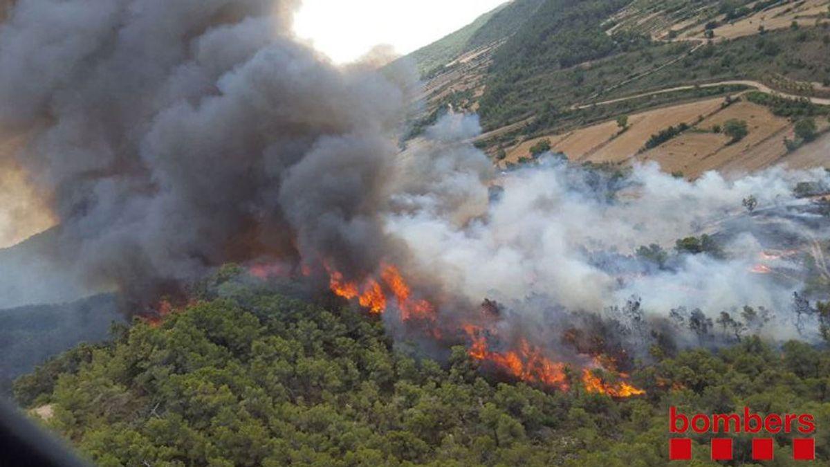 Declarado un incendio forestal en Vallbona de les Monges (Lleida)