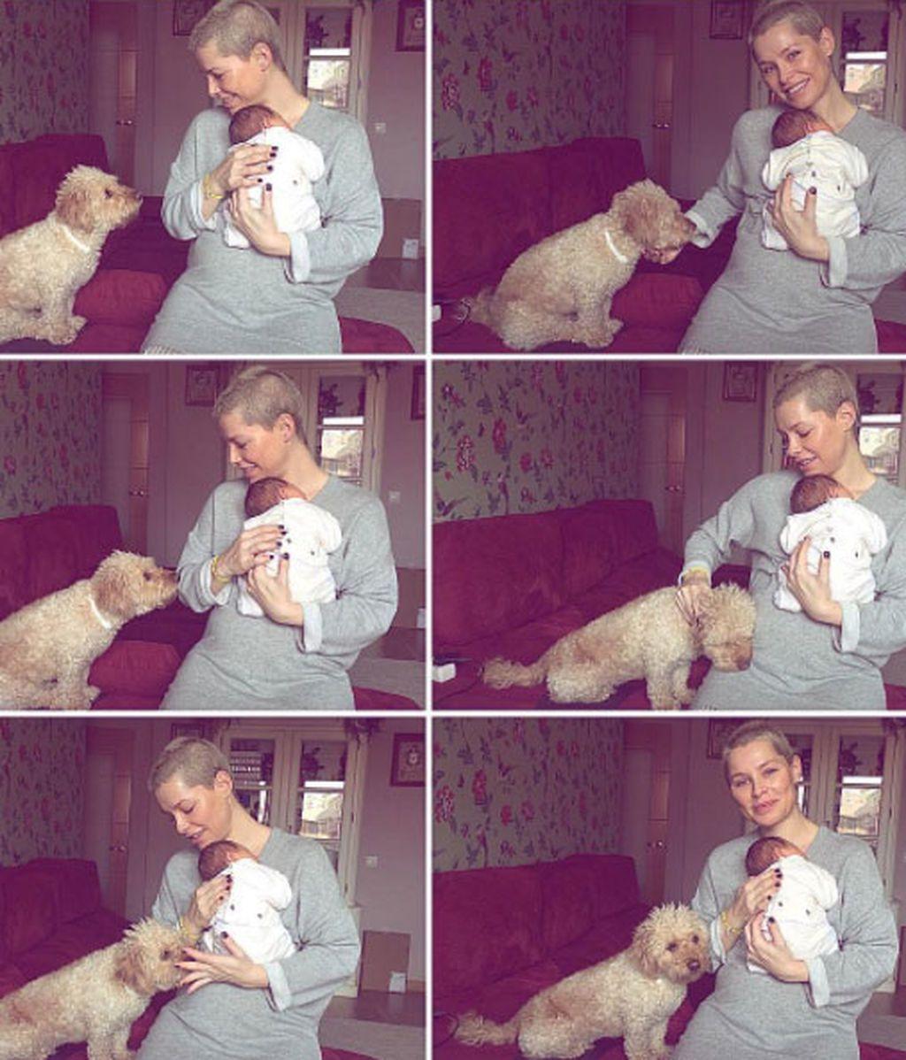 Los mejores amigos de los perros son los bebés, 'vips' que lo demuestran en redes