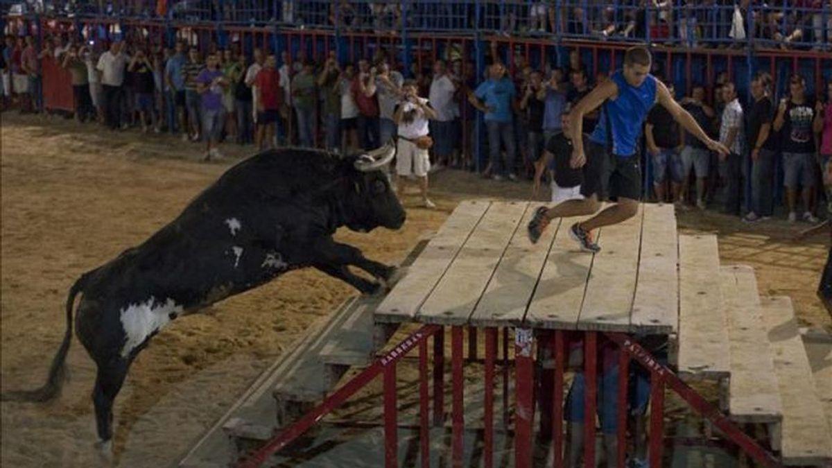 Denuncian a una peña de los 'bous al carrer' de Vall d'Uixó por vender la carne del toro