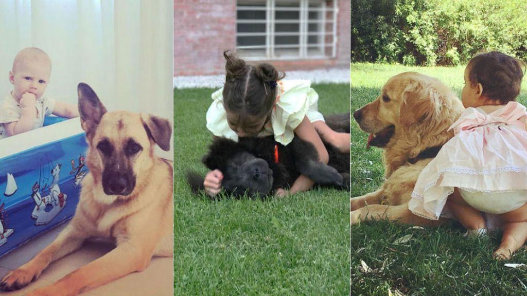 Los mejores amigos de los perros son los niños: Ella Bisbal y otros minivips lo demuestran en redes