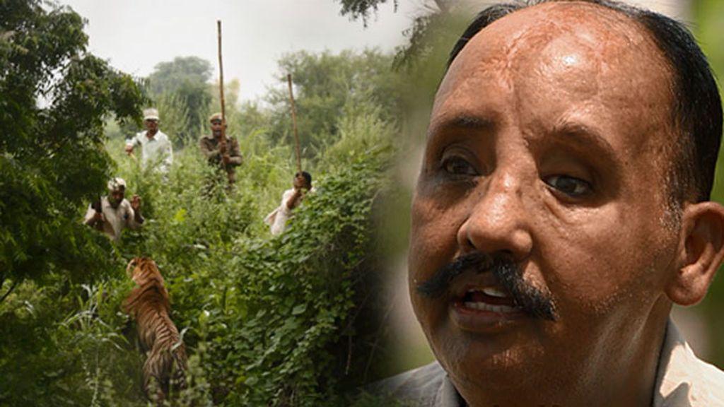 """Daulat, atacado por un tigre: """"Me destrozó la cara, mi mandíbula colgaba y tuve que sujetármela con las manos"""""""