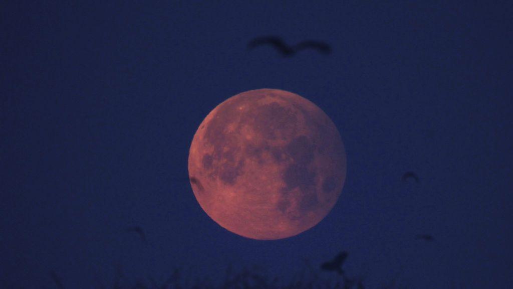 El segundo eclipse lunar del año podrá verse en España mañana a partir de las 21.10 horas