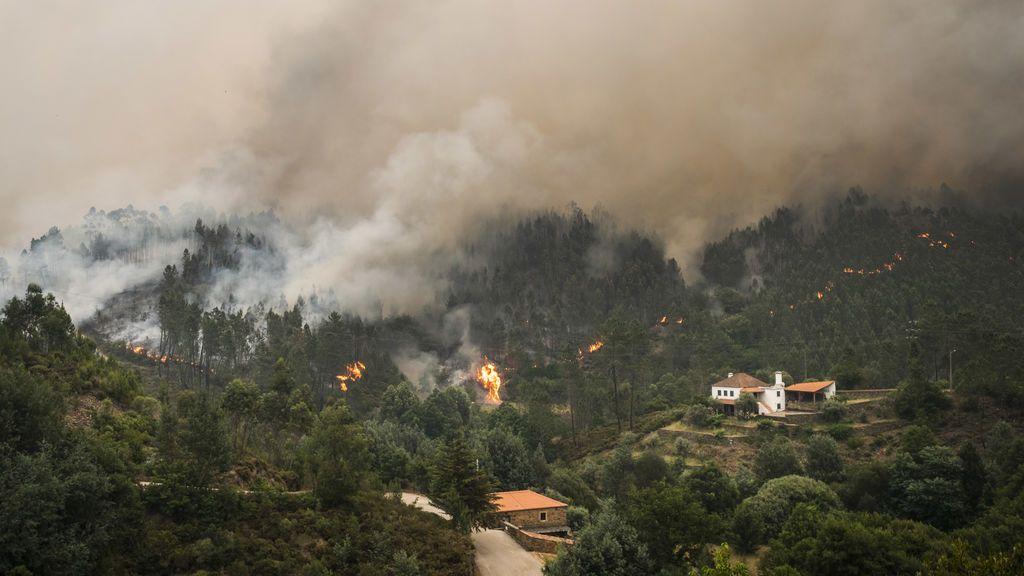 El fuego ha arrasado 63.762 hectáreas en lo que va de año, el peor del último lustro