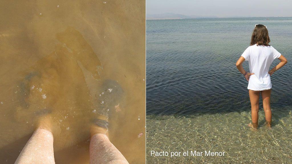 Pendientes del fenómeno Lucifer: la subida de la temperatura del mar podría desequilibrar el ecosistema de nuevo
