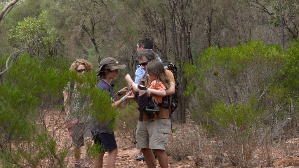 Perdidos y rodeados de hormigas carnívoras, ¿encontrará la familia las cuevas pictóricas?