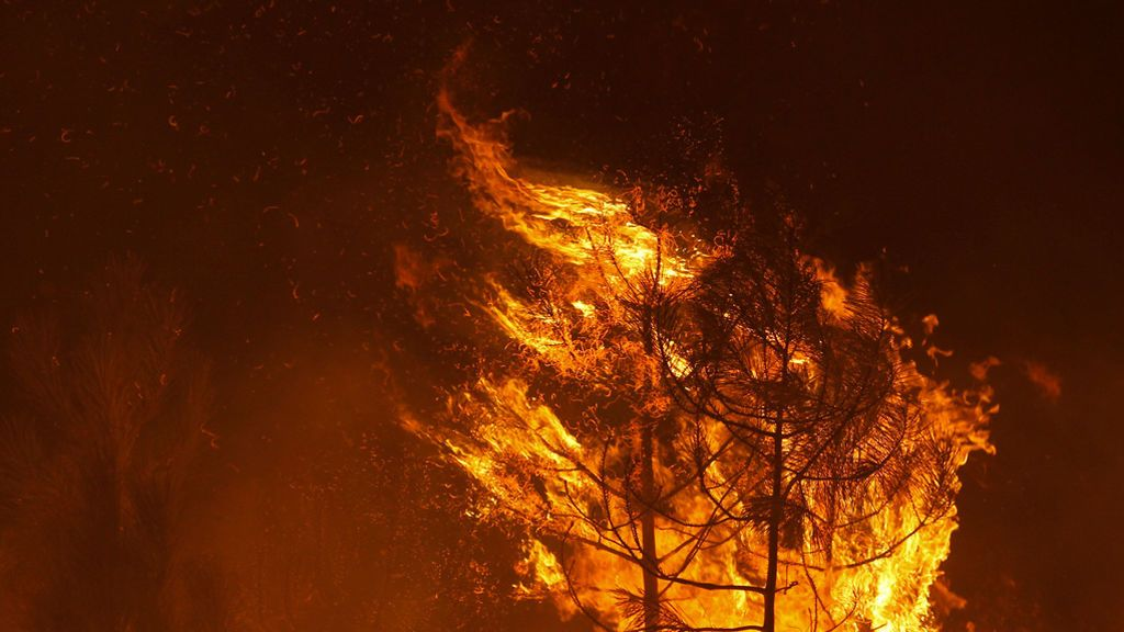 España ofrece ayuda a Portugal para combatir los incendios con 120 bomberos
