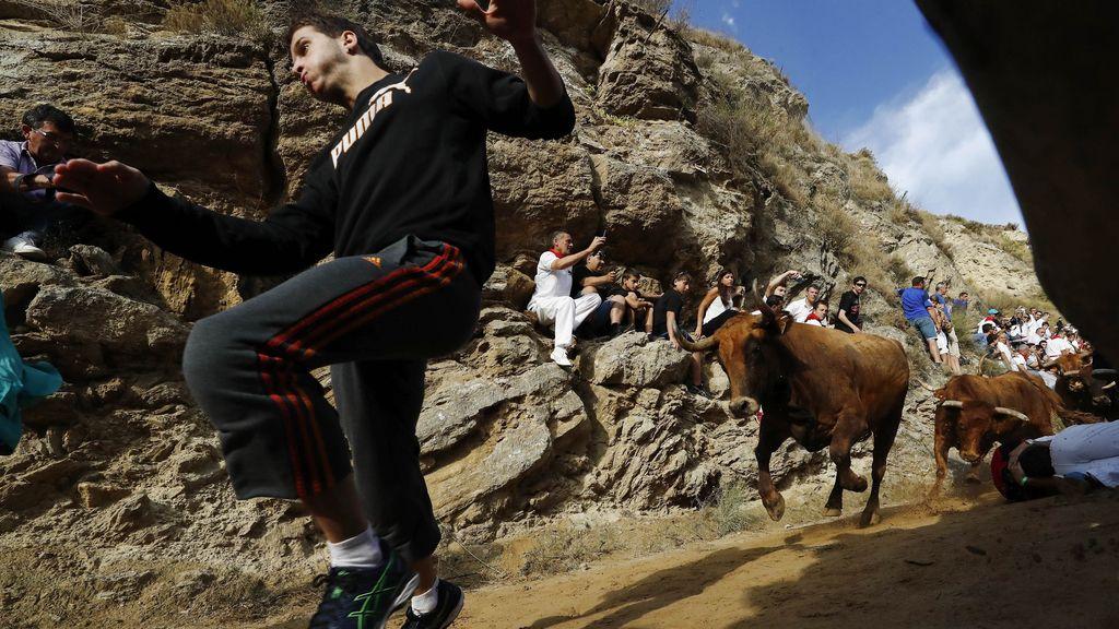 El encierro del Pilón...carrera cuesta abajo con los toros a las espaldas