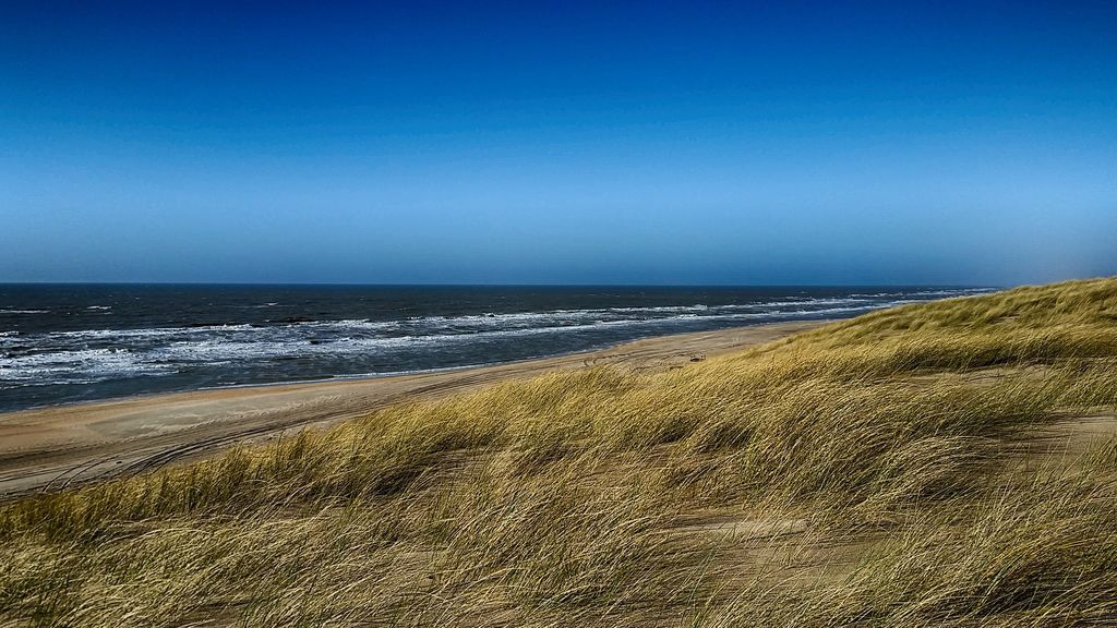 beach-1340717_1920