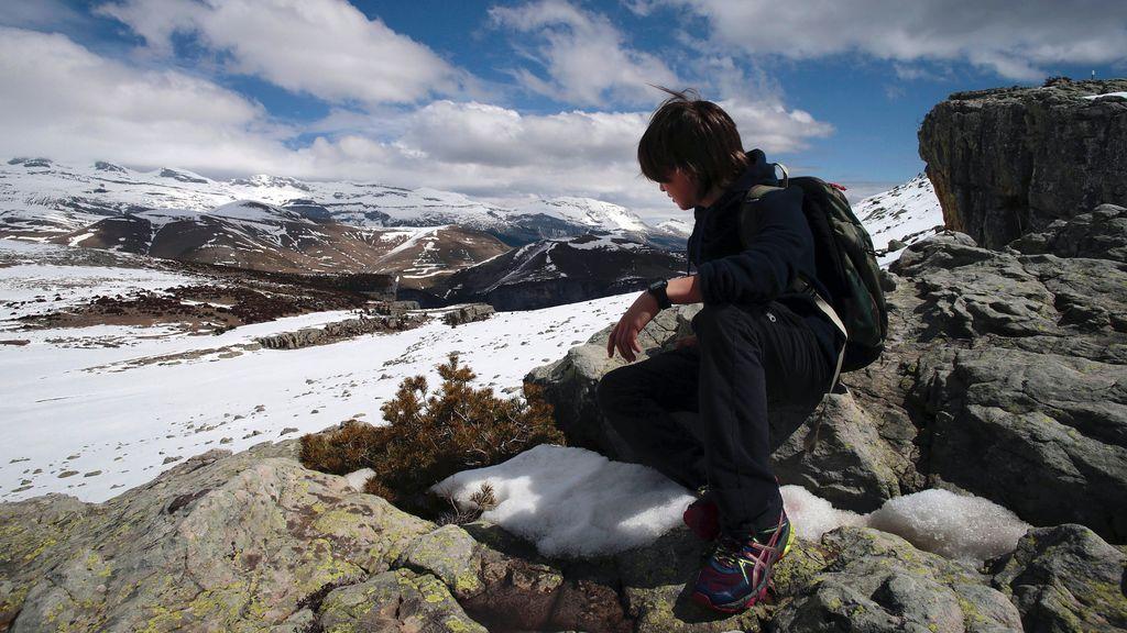 Ventiscas y quebrantahuestos en los Pirineos, próxima parada de 'Espíritu salvaje'