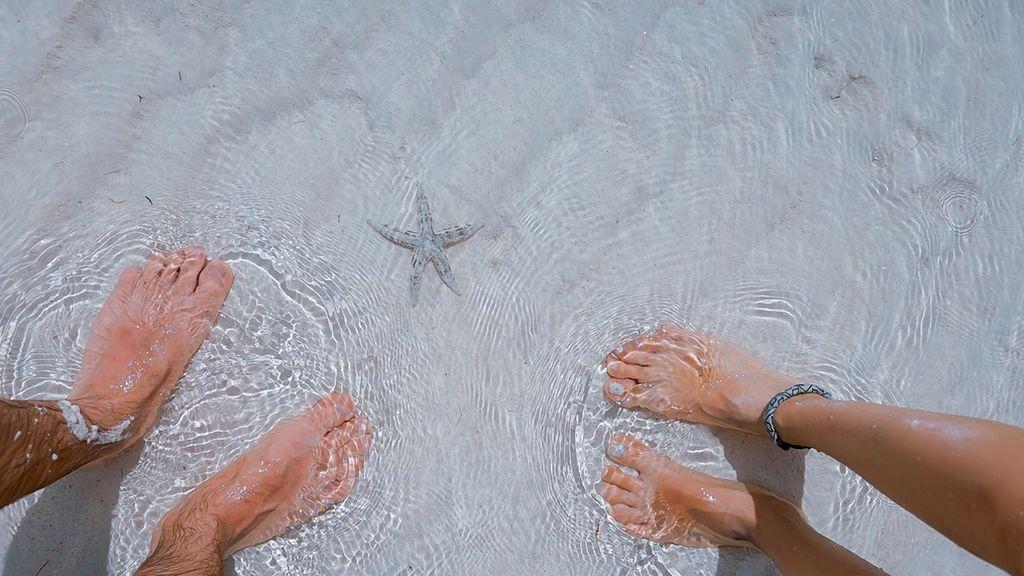 La moda del selfie en el agua que está acabando con las estrellas de mar