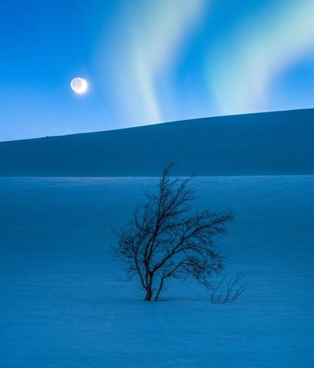 Foto realizada por Tommy Eliassen (Noruega), en Saltfjellet (Noruega)