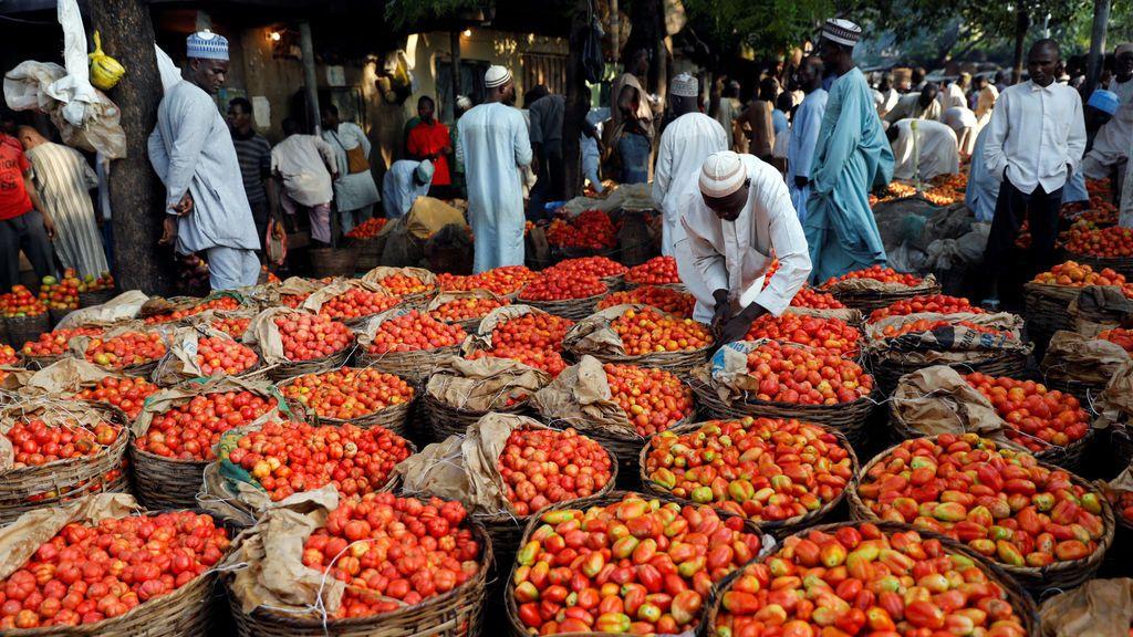 La gente pasea entre cestas de tomates en un mercado en Kano, al noroeste de Nigeria