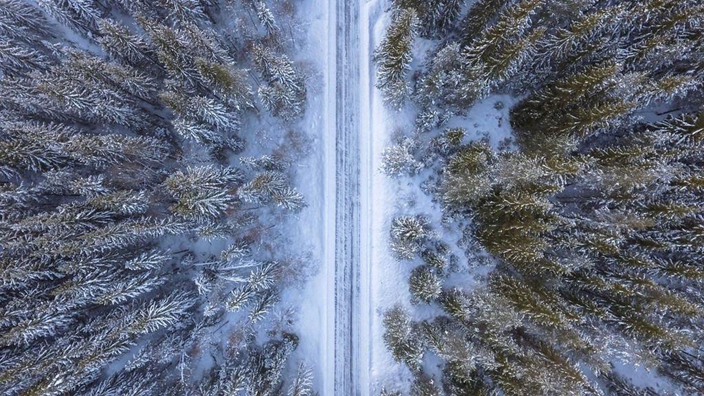 El permafrost de la Tierra se derrite: ¿por qué debe preocuparte?