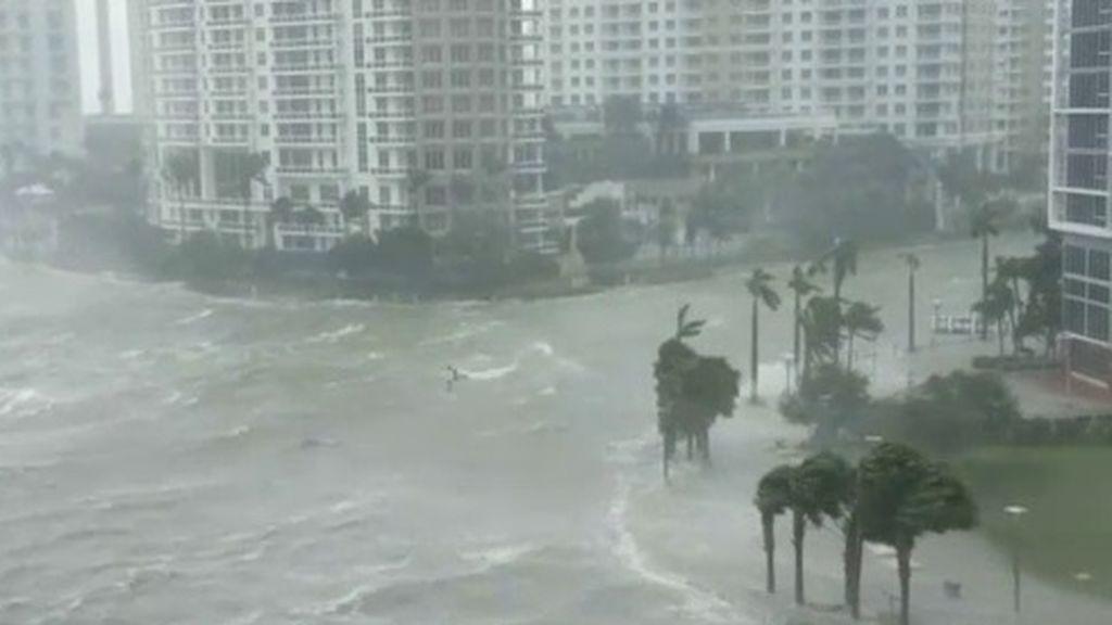 El devastador paso de Irma por Florida y el Caribe