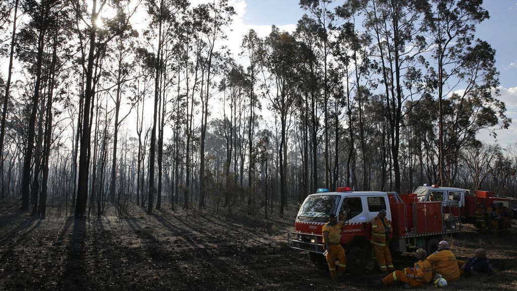 Incendio forestal en el Valle Hunter