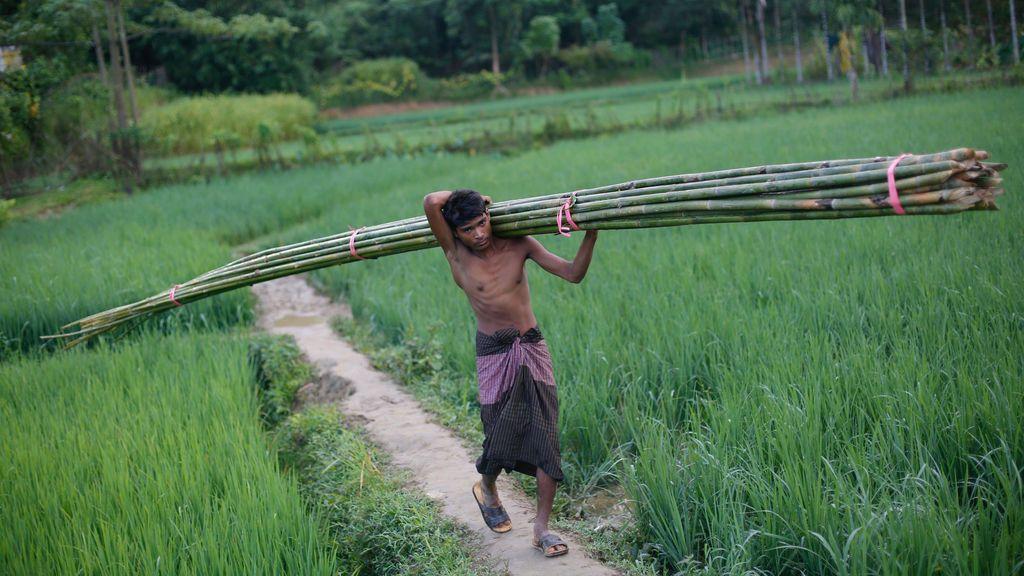 Construcción de un refugio temporal en Bangladesh