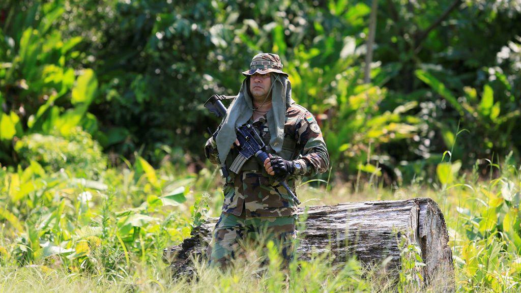 Las autoridades bolivianas inspeccionan asentamientos ilegales de coca