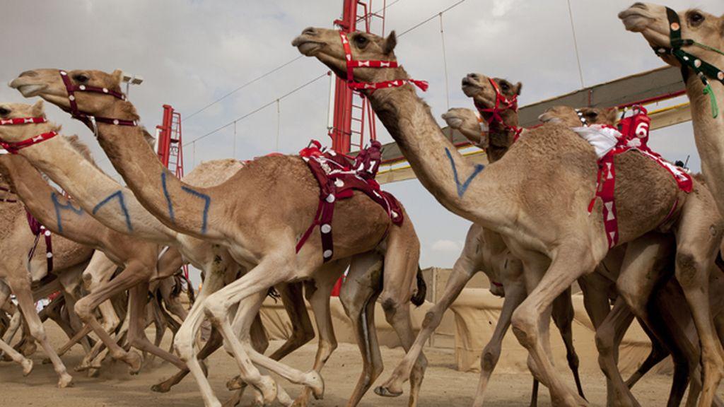 Desde la antigua ciudad de La Meca hasta los paisajes urbanos ultramodernos del Golfo Pérsico