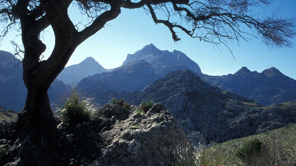 Pico Puig Roig, en la Sierra de Tramuntana (Mallorca)