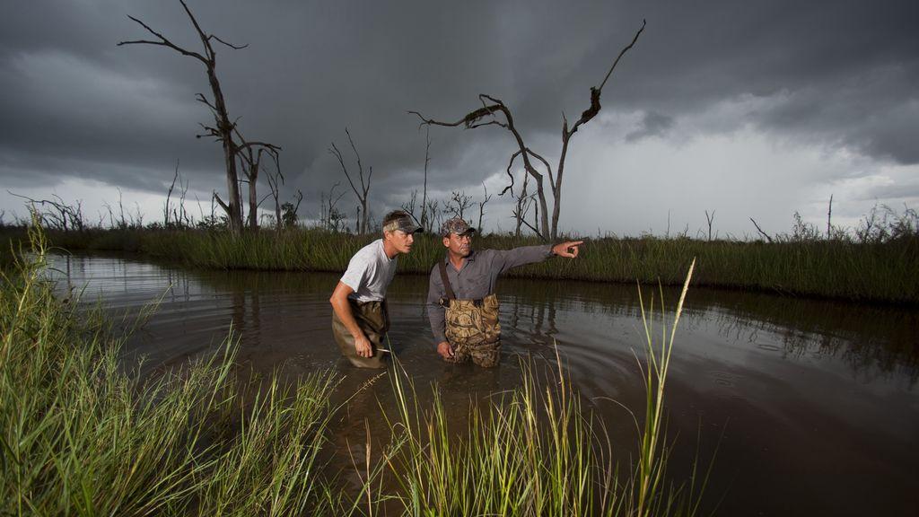 'Los cazadores del pantano'
