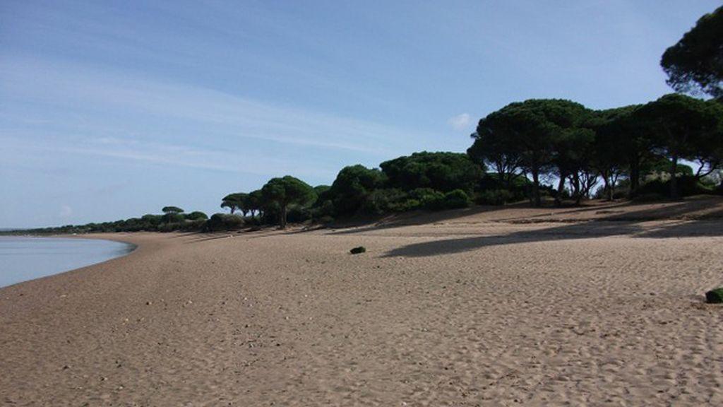 Antonio Vega Cano: Río San Pedro, en Puerto Real (Cádiz).