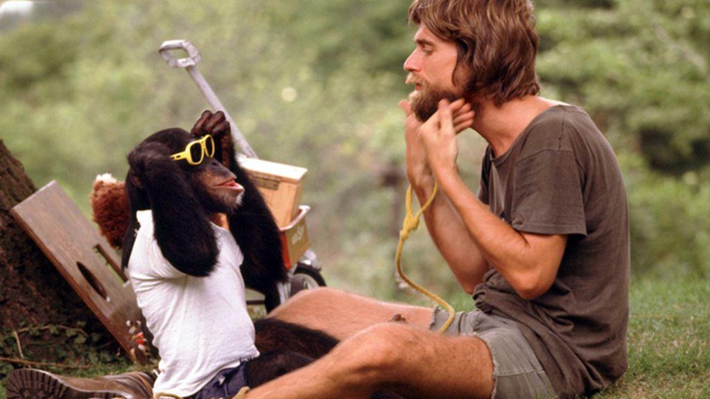 Un chimpancé que habla con los humanos