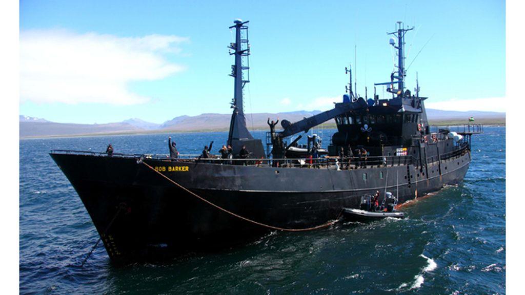 'Piratas ecológicos'