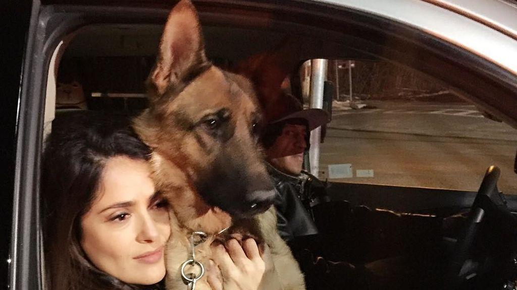 Salma Hayek y su perro