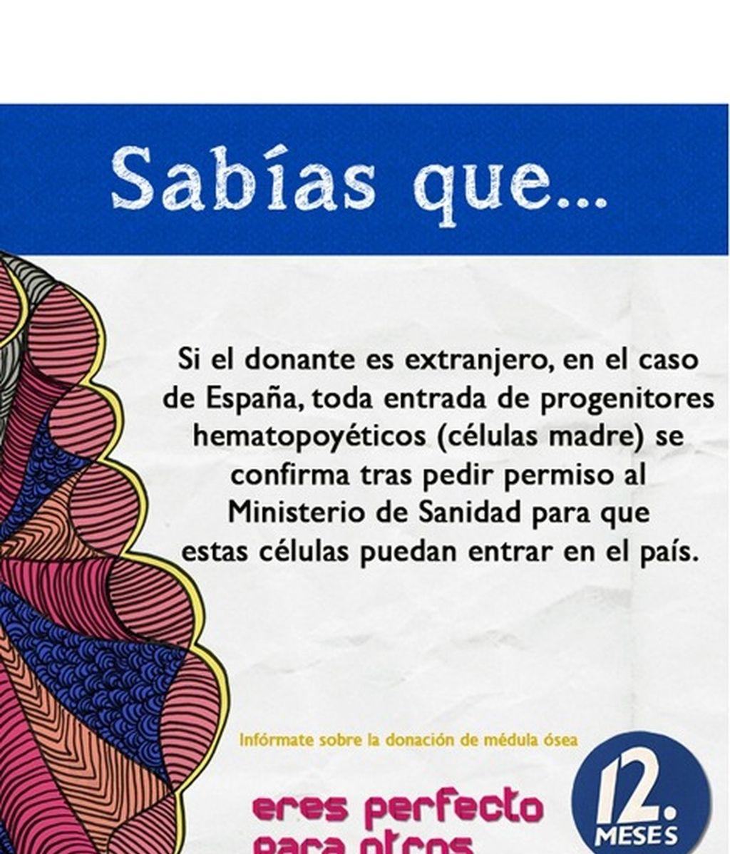 El REDMO, la donación, el trasplante... Infórmate.