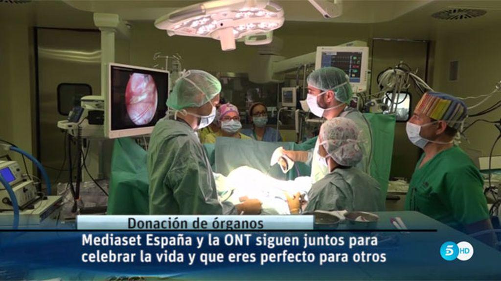 Mediaset España y la ONT celebran juntos que 'Eres perfecto para otros'