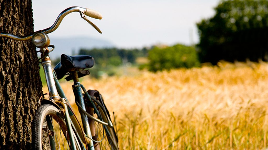 bici campo