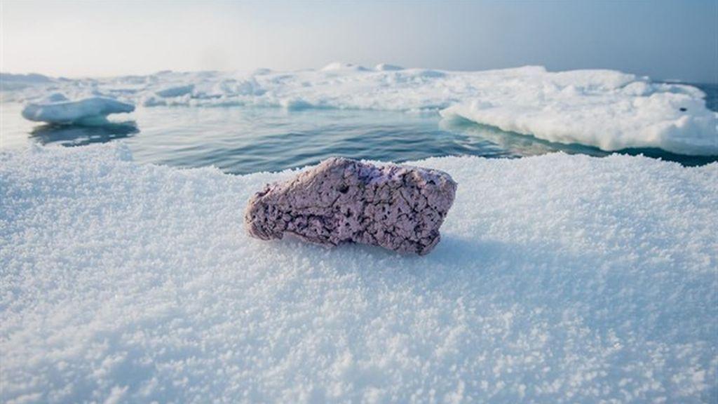 Residuos plásticos aparecen sobre el hielo cerca del Polo Norte