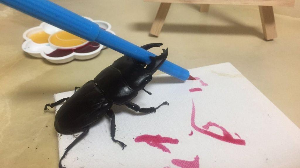 Spike, el escarabajo que gana adeptos en las redes sociales por sus cuadros