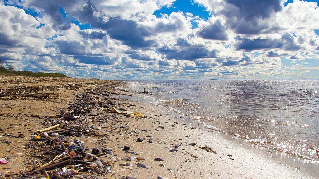¡Ayuda! Nuevas tecnologías para quitar la porquería del mar tú mismo