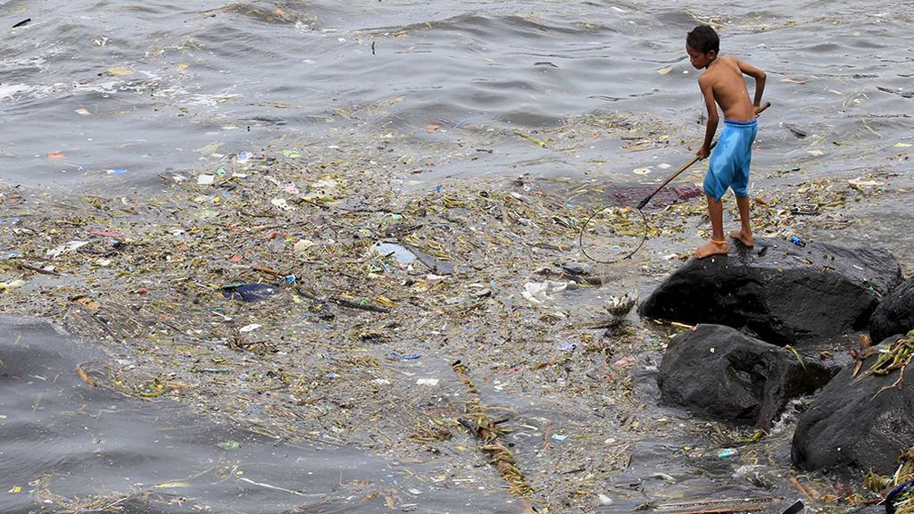 De Japón a Oregón: 300 especies marinas viajan a bordo de basura marina desde el tsunami de 2011
