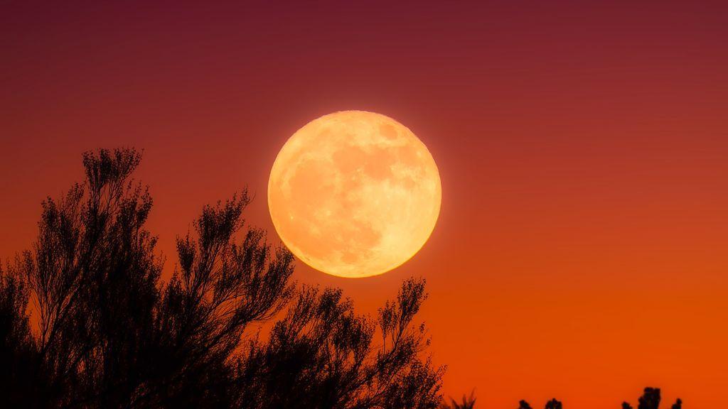 Roja, grande y brillante: llega la gran luna llena de otoño