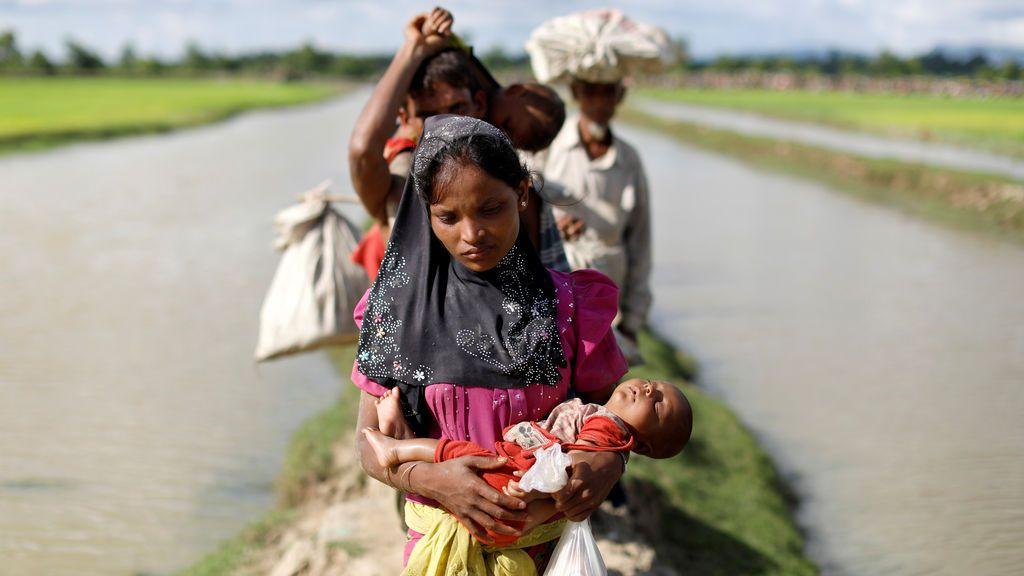 Refugiados Rohingya cruzan un campo de arroz en Bangladesh