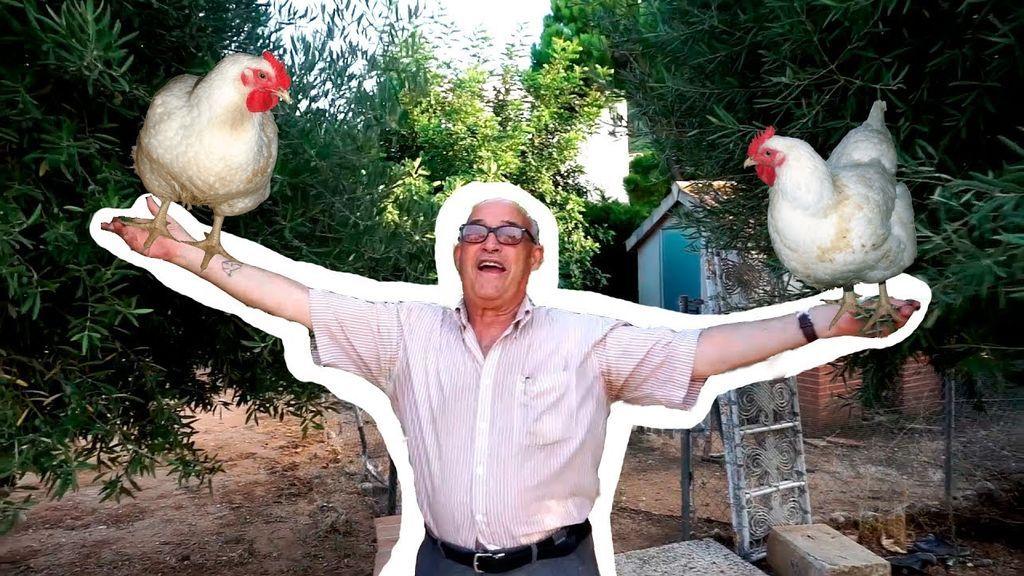 ¡Matanza en el gallinero de Atrapatuabuelo!