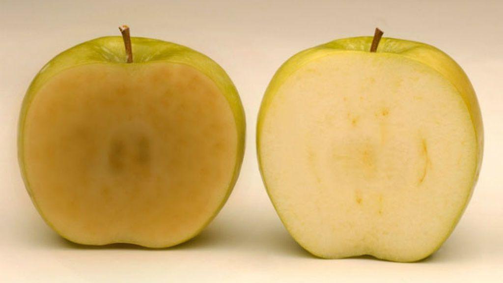 Embolsada y troceada: este otoño podrás comprar la manzana que no se oxida