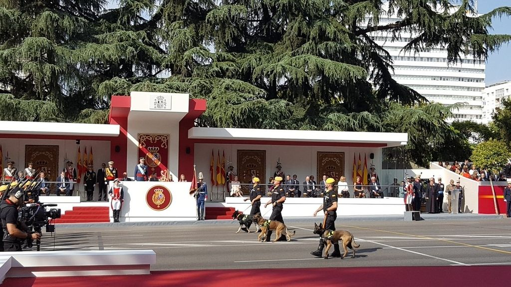 Las imágenes que no has visto del desfile de la Fiesta Nacional