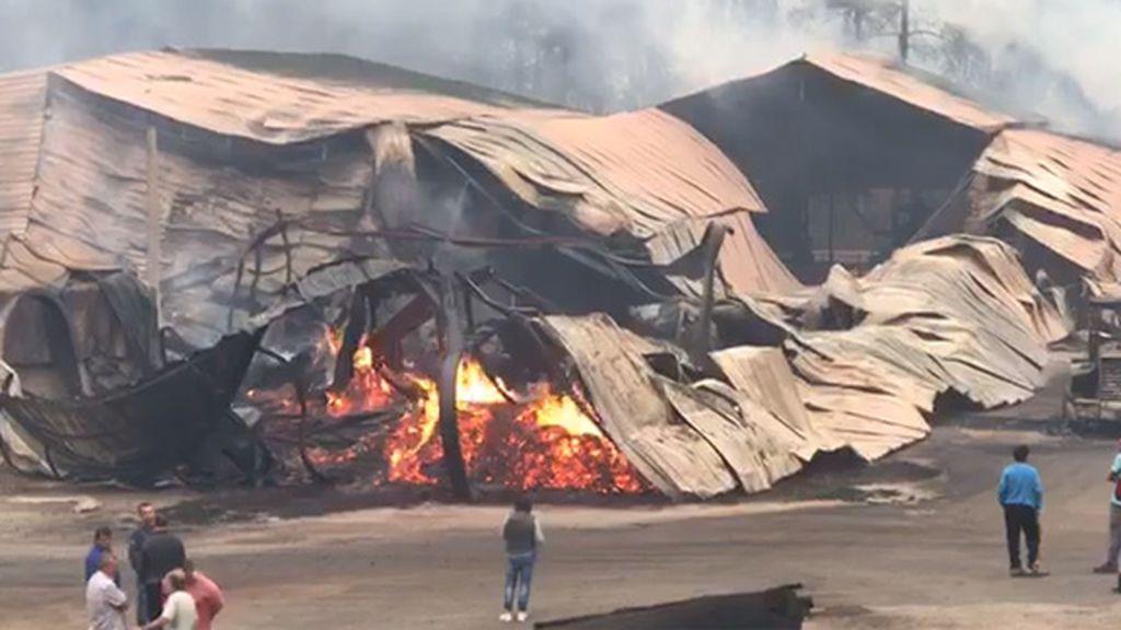Arde Galicia, 210 incendios en 48 horas