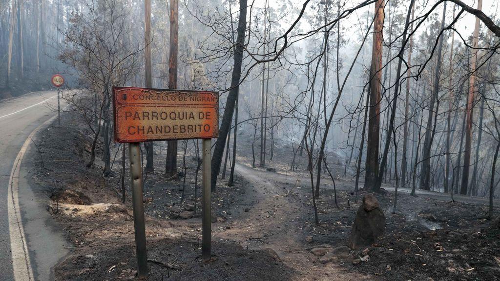 """Los brigadistas piden cambiar la política de incendios """"de los años 90"""" porque el fuego ya no es estacional"""